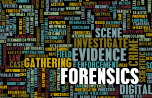 forensic-consulting